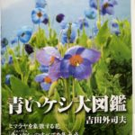 青いケシ大図鑑